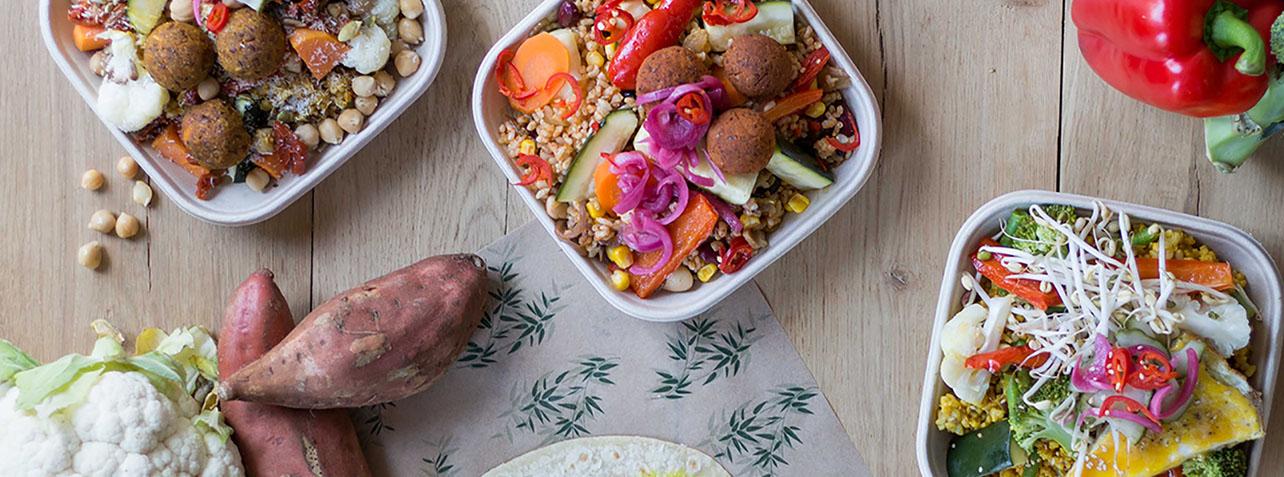 100% biologische gerechten, vegetarisch en vegan healthy fast food, Healthy fast food, Goed Eten Den haag, Bestellen, Bezorgen, af halen, Gezond, biologisch restaurant, vegetarisch, vegan